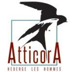 Atticora
