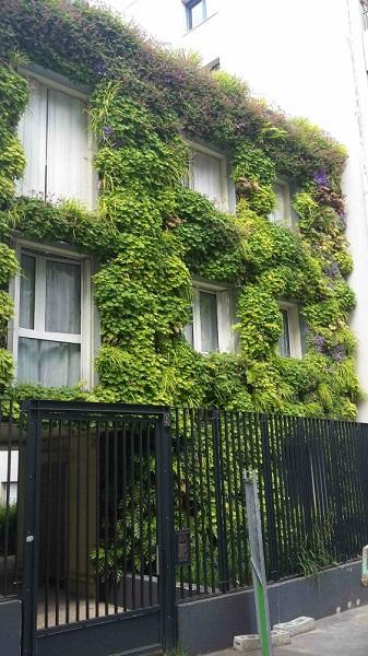 Raoul-Dufy : mur végétal
